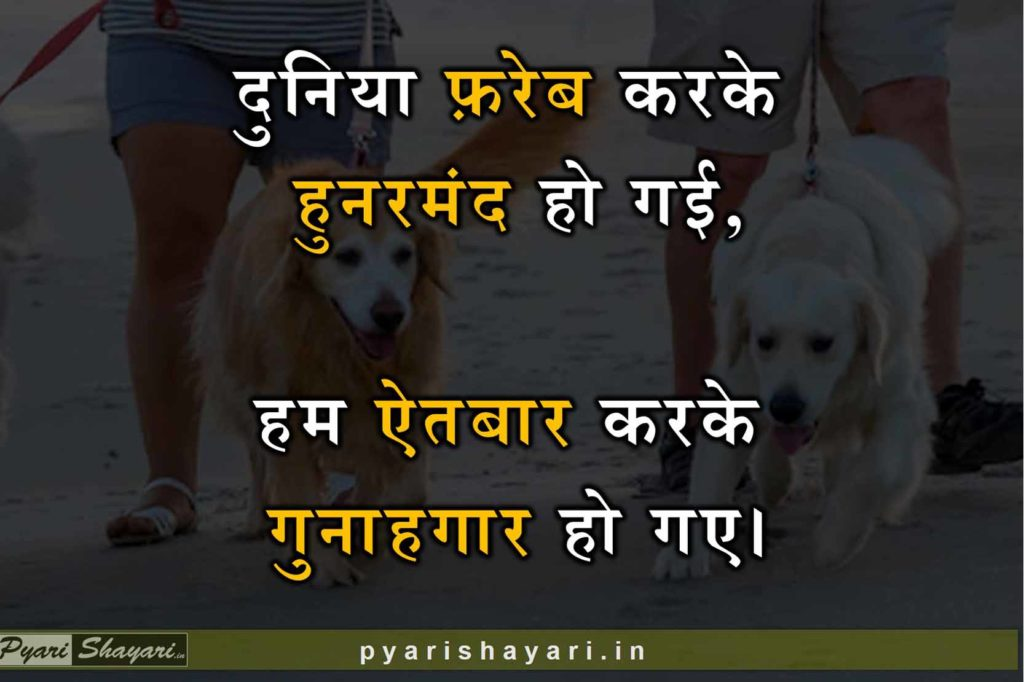 Best shayari for life