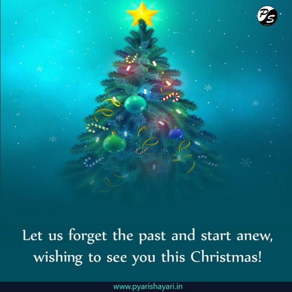 merry Christmas Hindi
