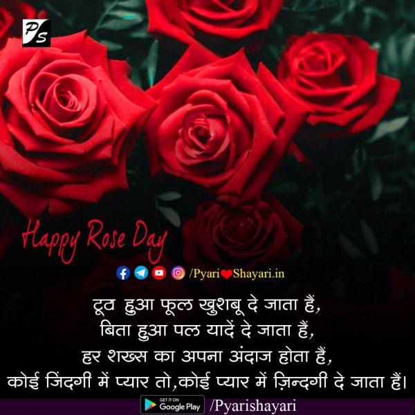 rose day shayari hindi