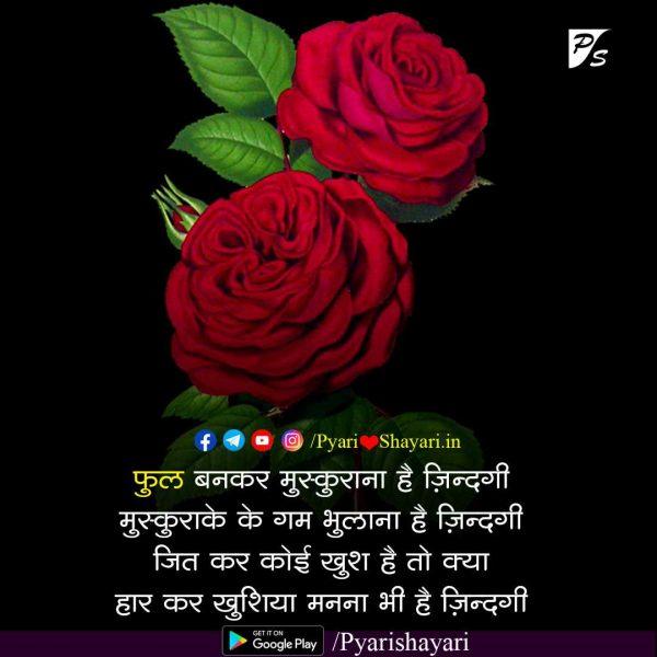 Gulab na phota hindi