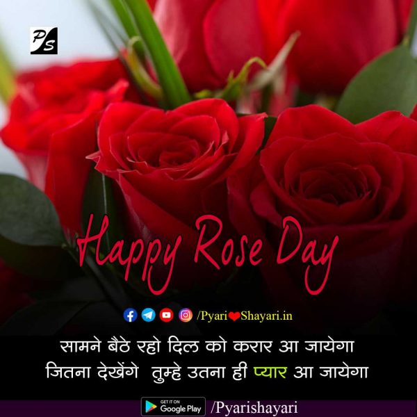 quotes on rose hindi