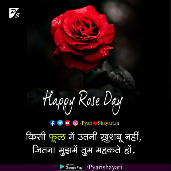 rose day image shayari